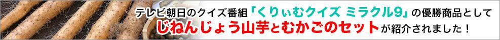 くりぃむクイズ ミラクル9の優勝商品として「じねんじょう山芋とむかごのセット」が紹介されました!
